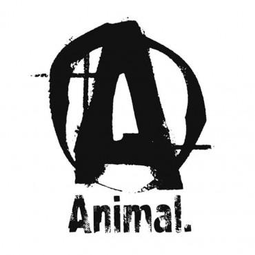 Animal Stak 21 Packs Universal Nutrition
